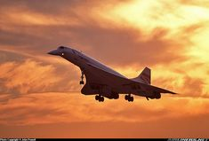 Sunset landing - Photo taken at London - Heathrow (LHR / EGLL) in England, United Kingdom on October Concorde, Passenger Aircraft, Sunset Background, Chatsworth House, Commercial Aircraft, British Airways, Air France, Boeing 747, Great Shots