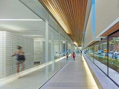 Gallery - Regent Park Aquatic Centre / MacLennan Jaunkalns Miller Architects - 7