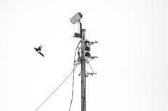 Hinrich Carstensen Photography