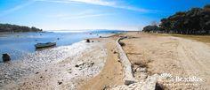 Beach Dalmacija - Privlaka - Dalmatia - Zadar - Croatia