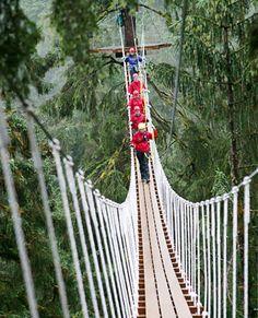 Canopy bridge, nr Ketchikan, Alaska