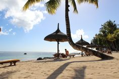 Mauritius, Manuela Destinations, Mauritius, Around The Worlds, Patio, Outdoor Decor, Home Decor, Board, Travel Destinations, Decoration Home