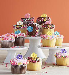 Little Whisk Spring Bouquet Mini Cupcakes Store Coupons, Online Coupons, Discount Coupons, Mother's Day Deals, Spring Bouquet, Mini Cupcakes, Gift Baskets, Cookies, Desserts