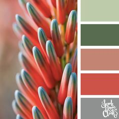 Calming tones | Click for more color combinations and color palettes inspired by the Pantone Fall 2017 Color Trends, plus other coloring inspiration at http://sarahrenaeclark.com | Colour palettes, colour schemes, color therapy, mood board, color hue