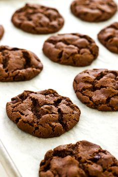 Chocolate Chip Gingerbread Cookies - I baked these at the 325 degrees for 15 minutes. The flavor is good, but the edges of the cookies seemed too hard. Cookie Desserts, Just Desserts, Cookie Recipes, Delicious Desserts, Dessert Recipes, Yummy Food, Mini Desserts, Yummy Cookies, Yummy Treats
