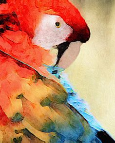 Parrot bright and colorful acrylic painting by AnimalArtIncognito Awesome Art, Cool Art, Beauty In Art, Rainbow Art, Parrots, Artist Art, Great Artists, Fur Babies, Insects