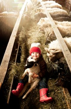 """My Little Lamb II"" by Gigja Einarsdottir Doesn't get much cuter!!!!"