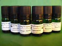 6 Pure Essential Oils Set, Therapeutic Grade 5mls, Eurodroppers, Natural Healing #SleepingDragonsCompany