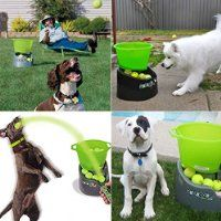 GoDogGo Fetch Machine for Dogs - G4 Automatic Ball Launcher w/Remote, Safety Arc, Multi-Use Features