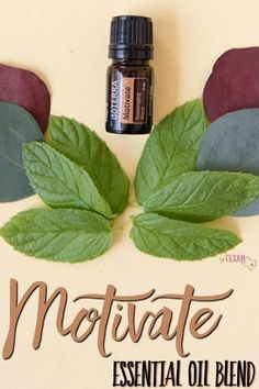 "Motivate Essential Oil Blend uses and benefits are incredibly powerful for ""getting stuff done."" Check out all the amazing ways to use this blend here!"
