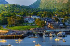 Bar Harbor, Maine- I visited there once and loved it!