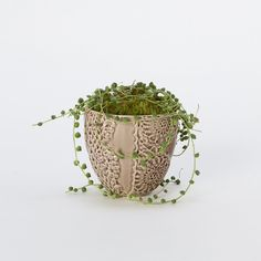 Lace Wrapped Pot in Gardening PLANTERS Flower Pots at Terrain - $10.00