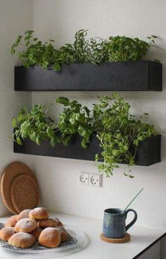Indoor herb garden in unused spaces   #smallgardenideas #sgi                                                                                                                                                                                 More