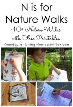 N is for Nature Walks . nature walks with free printables. Perfect for summer and often spring or fall as well - Living Montessori Now Nature Activities, Montessori Activities, Spring Activities, Learning Activities, Activities For Kids, Free Preschool, Preschool Science, Preschool Lessons, Preschool Kindergarten