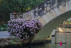 Rosita's Bridge (San Antonio, TX)