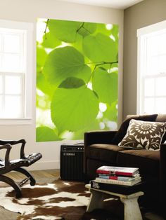 Linden tree leaves, wall mural.