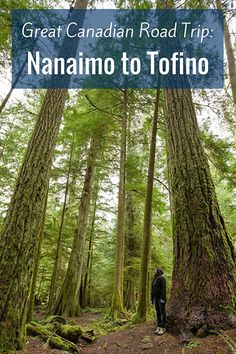 The road from Nanaimo to Tofino in BC will take you on a spectacular journey past ancient rainforests and dramatic, snow-capped peaks.