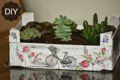 Decoupage, transfer y otras técnicas. Restauración de muebles. Tutoriales DIY y craft ideas.: Reciclaje caja de fruta. DIY jardín de crasas.