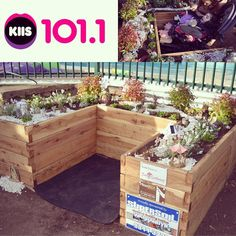 ModBOX and @fairygardeningaustralia together with @kiis1011 sponsor one of the three wishes of 8-year-old Jocelyn. #raisedgardenbed #fairygarden #modbox #australia
