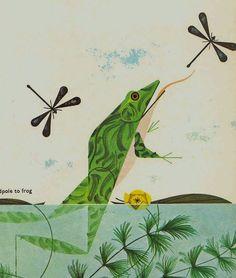 Tadpole to frog illustration by Charley Harper, from the Golden Book of Biology, 1961 Frosch Illustration, Children's Book Illustration, Animal Illustrations, Illustration Fashion, Charley Harper, Frog Art, Affinity Designer, Deer Print, Design Graphique