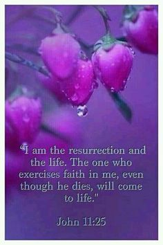 """John Jesus said to her: """"I am the resurrection and the life. The one who exercises faith in me, even though he dies, will come to life; and everyone who is living and exercises faith in me will never die at all. Bible Verses Quotes, Bible Scriptures, Faith Quotes, Biblical Quotes, Scripture Art, Psalm 143, A Course In Miracles, Favorite Bible Verses, Praise The Lords"""
