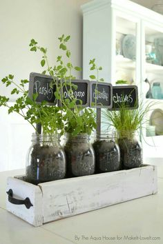 - Table Top Herb Garden…from an old pallet! - Table Top Herb Garden…from an old pallet! DIY Table Top Herb Garden…from an old pallet! Culture D'herbes, Herb Garden Design, Herbs Garden, Diy Garden, Balcony Garden, Party Garden, Garden Shrubs, Garden Oasis, Garden Tub
