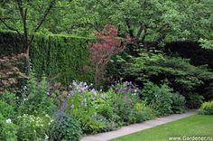 Mattison Thompson Garten | Ландшафтный дизайн садов и парков