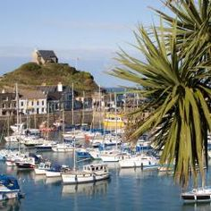 Ilfracombe Harbour, Devon, UK note the Yukka trees due to the mild climate Places To See, Places Ive Been, Devon Holidays, Devon England, Devon Uk, Devon And Cornwall, North Devon, Seaside Resort, Holiday Places