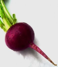 Ovarian Cysts Diet-Remedies - juicing for ovarian cysts- Ginger – piece Celery stalks – 2 Apple Juice – ½ a glass Pineapple – of one - 1 Weird Trick Treats Root Cause of Ovarian Cysts In Dys - Guaranteed! Fresh Beets, Grow Beets, Ovarian Cyst Treatment, Beet Smoothie, Smoothies, Beet Recipes, Juice Recipes, Primal Recipes, Coconut Recipes