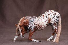 Vincenzo mold painted beautifully - Appaloosa horse model - blanket