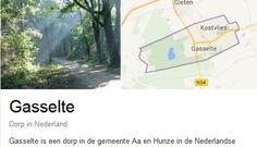 Gasselte-ogen - FemNa40