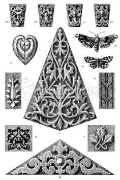 Vintage Engraving From 1875 Of Ornamental Art Design Elements