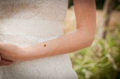 www.marry-marry.com