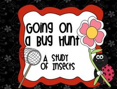 Going on a Bug Hunt - Smartboard Insect Study (Love the fe