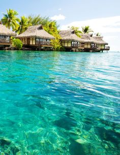 Beautiful Tropical Beach – Tahiti