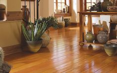 Chianti Cherry, amazing.  #blair #flooring #home #improvement #hardwood