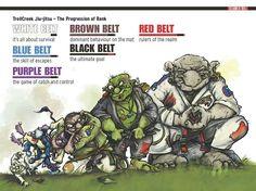 Belt in BJJ