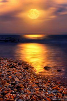Full moon rising over Ocean Reef Park on Singer Island Florida, United States