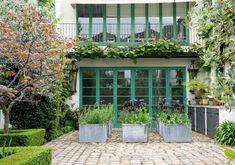 Neisha Crosland's spring garden, black parrot tulips and purple sensation alliums, to be followed by deciduous herbs. Gardenista