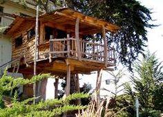 cose da fare nella vita dormire in una casa sull albero