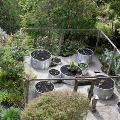 culvert pipe planter