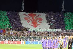 Fiorentina Football Fans, My Passion, Soccer, Magic, Places, Sports, My Crush, Hs Sports, Futbol