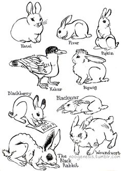Watership Down characters by http://noogenesis.tumblr.com/post/74983378496/was-drawin-buns-foxaloxa-suggested-i-do