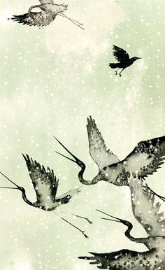 Book illustrations by Raquel Aparicio