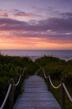 Sanibel Island, Florida                                   © Ellen Rooney/Robert Harding World Imagery/Corbis