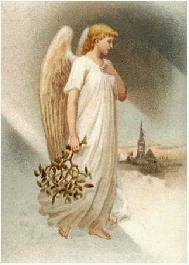 Angel de Ana Catalina