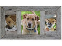 Recliamed Rustic Barnwood Pictrue Collage Frame 8x10 W/5x7s