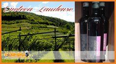 La Formika: Enoteca Laudense: 13 bottiglie di Buttafuoco a soli € 38! - Enoteca Laudense