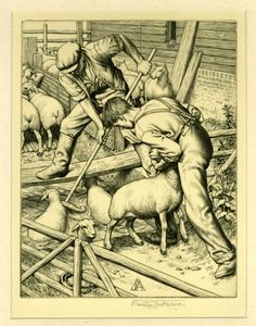 Print, Sheep Dipping, 1937. This original engraving by Stanley Anderson (1884–1966) is one of an edition of forty prints. A Fellow of the Royal Academy, Anderson spent a twenty-year period closely observing scenes like this so as to create as precise an engraving as possible. (MERL/2010/113)
