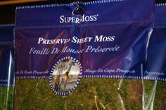 Preserved Sheet Moss